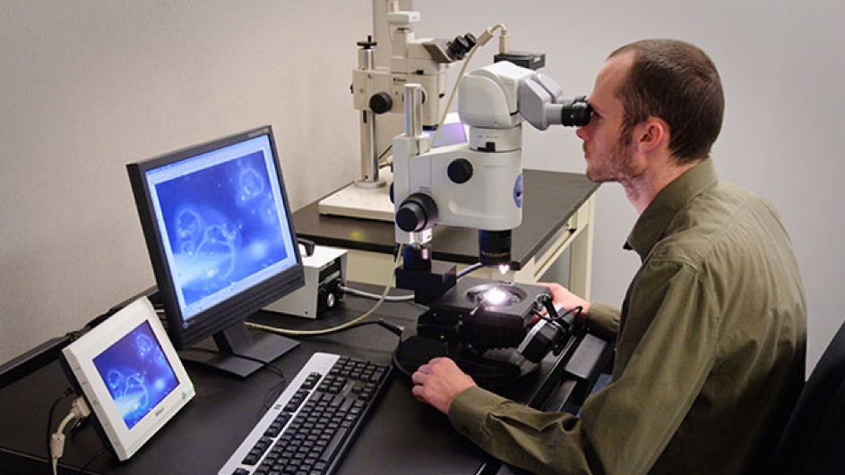 Photo-microscopes are used to photograph gems for your diamond chain, enlarged up to a hundred times - BAUNAT.
